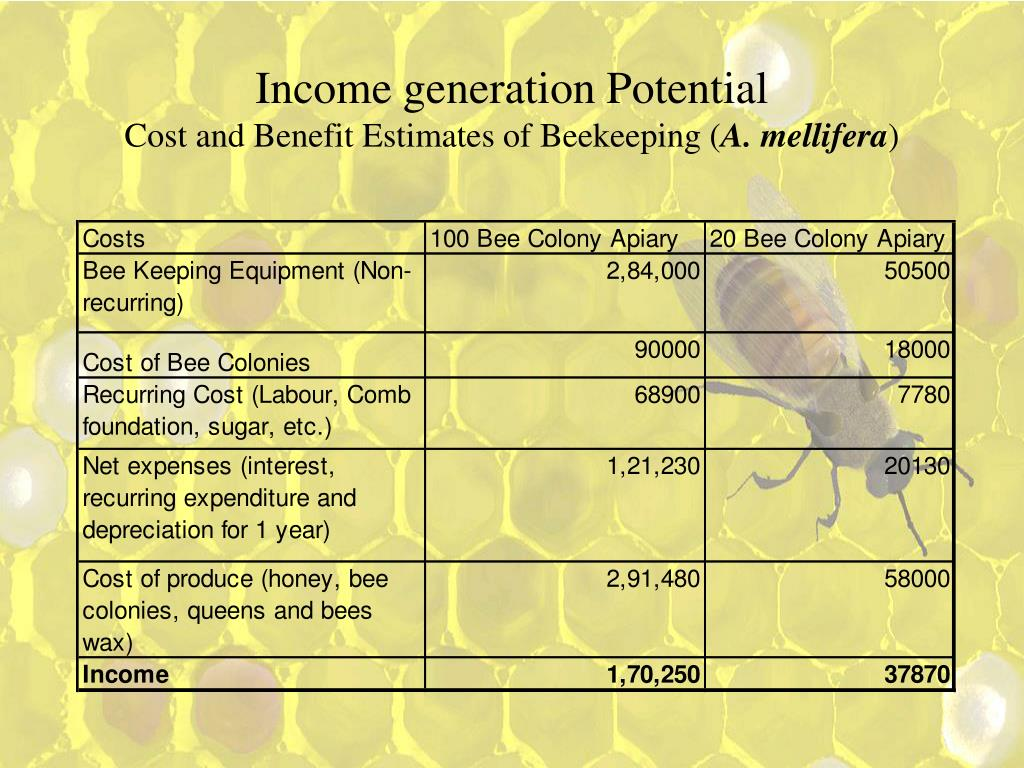 Income generation Potential