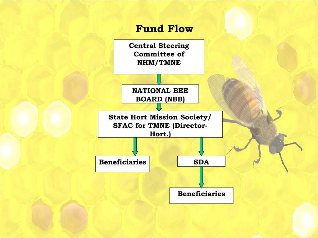 Fund Flow