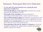 summary participant interviews indicated