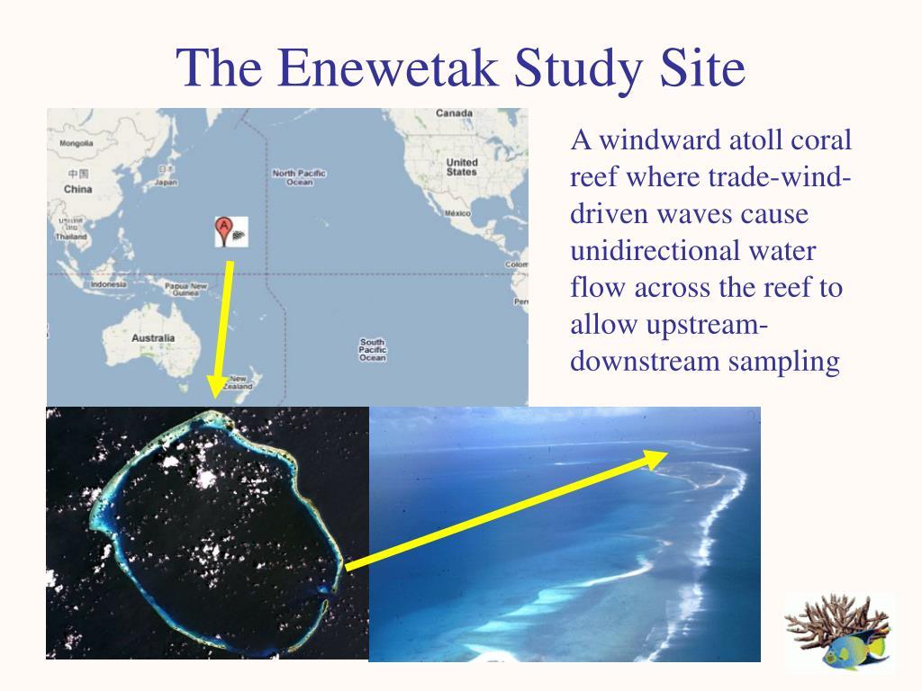 The Enewetak Study Site