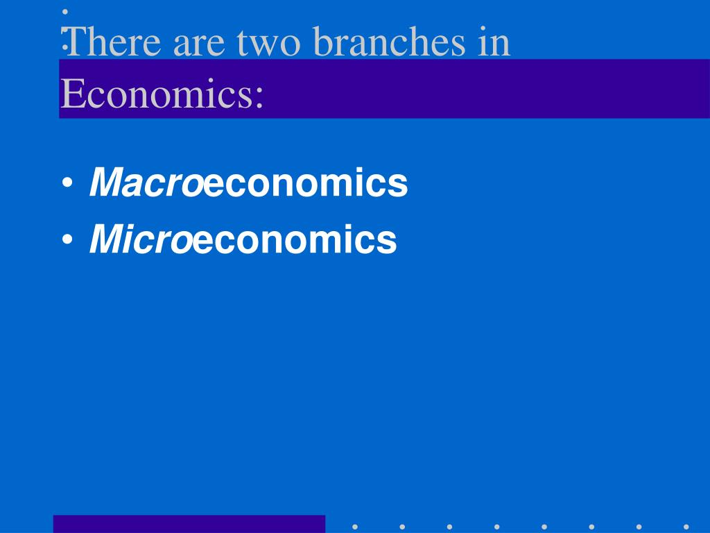 There are two branches in Economics: