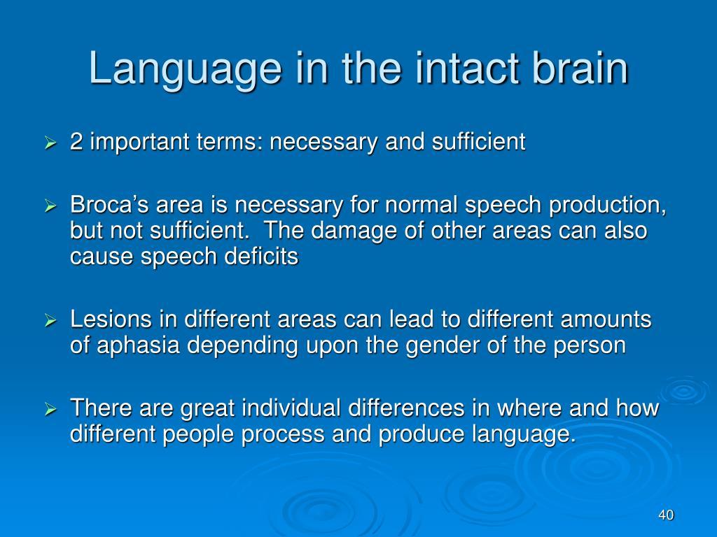 Language in the intact brain