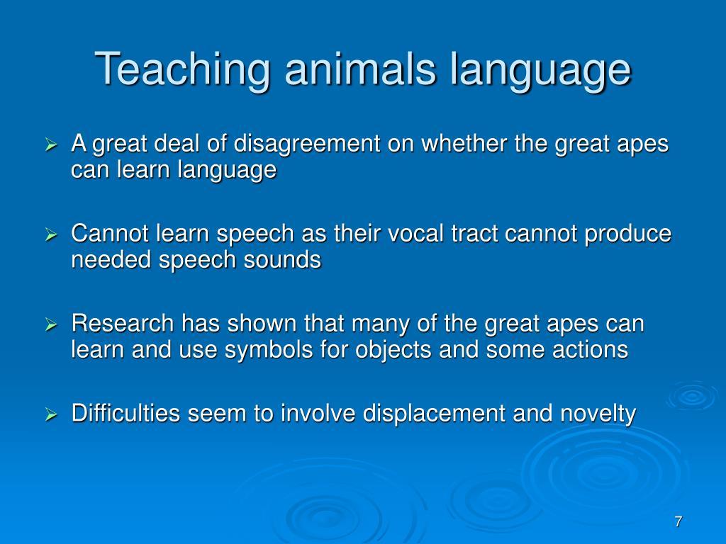 Teaching animals language