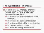 the questions thoreau28