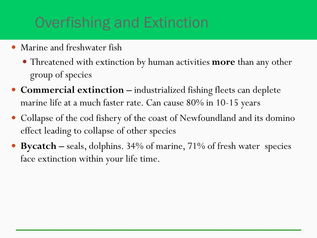 Overfishing and Extinction