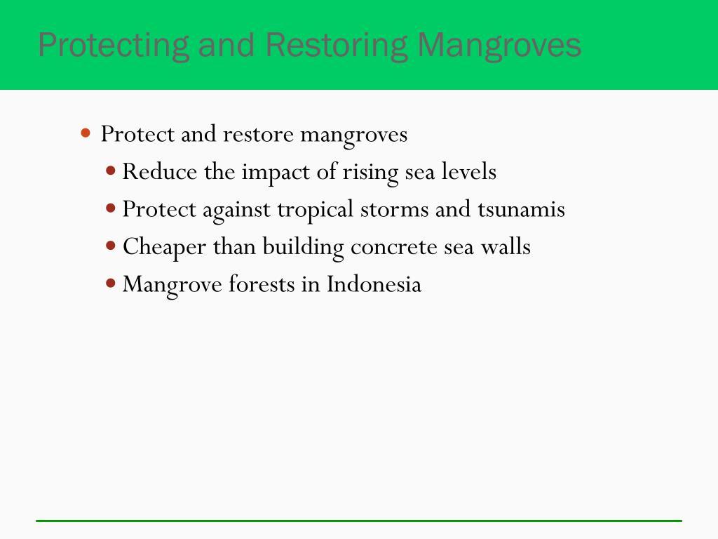 Protecting and Restoring Mangroves
