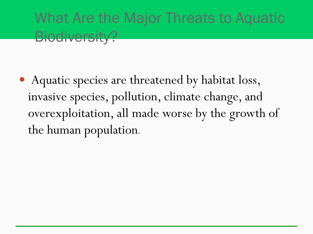 What Are the Major Threats to Aquatic Biodiversity?