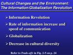 cultural changes and the environment the information globalization revolution