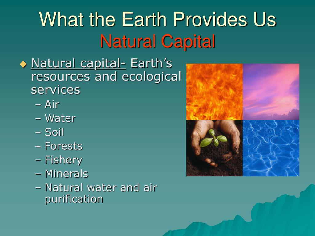 What the Earth Provides Us