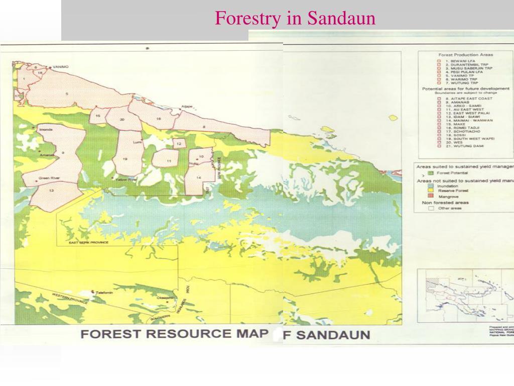 Forestry in Sandaun