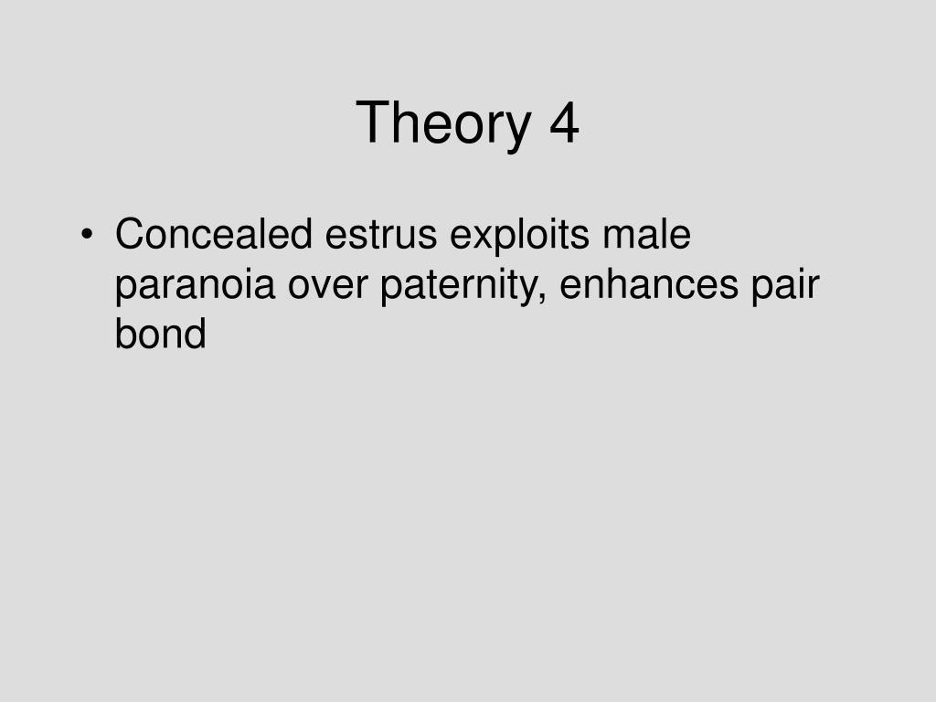 Theory 4
