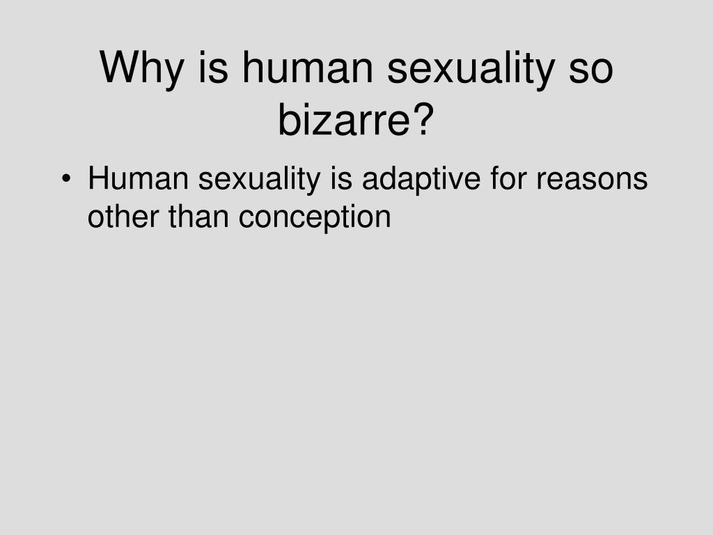 Why is human sexuality so bizarre?