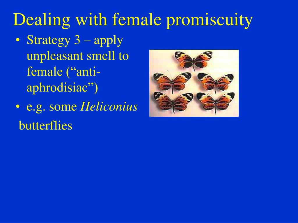 Dealing with female promiscuity