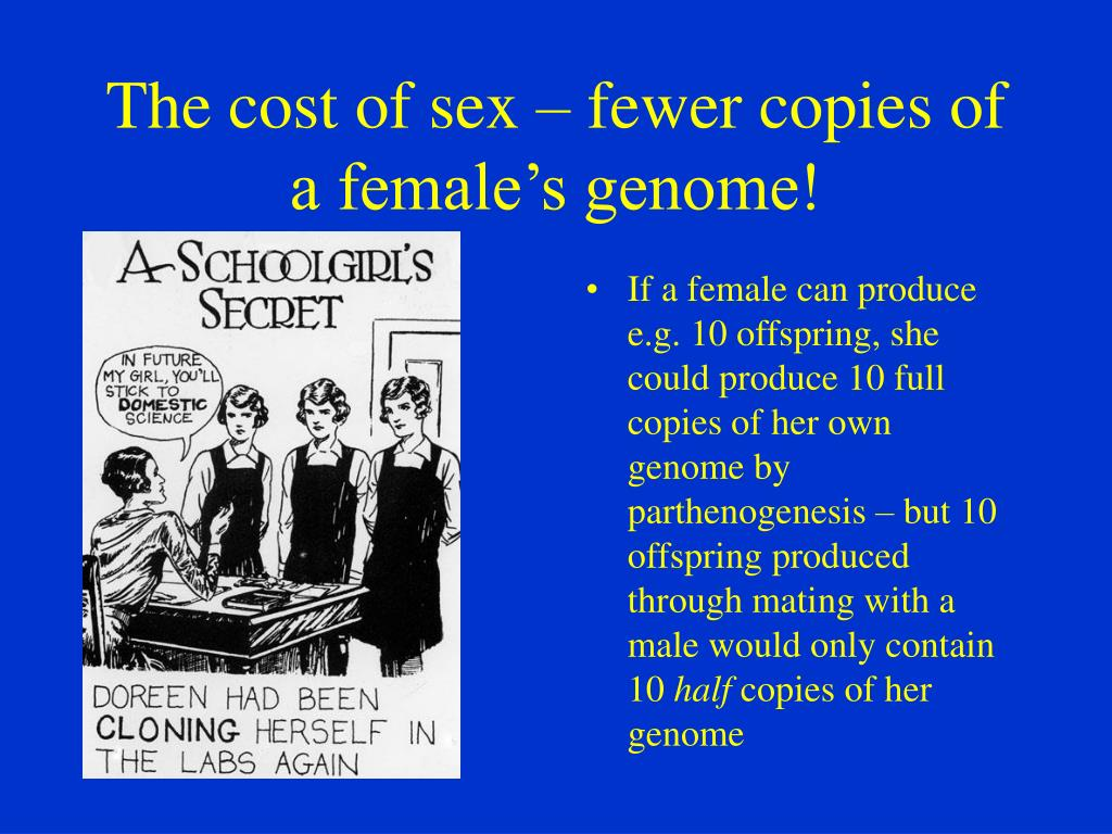 The cost of sex – fewer copies of a female's genome!