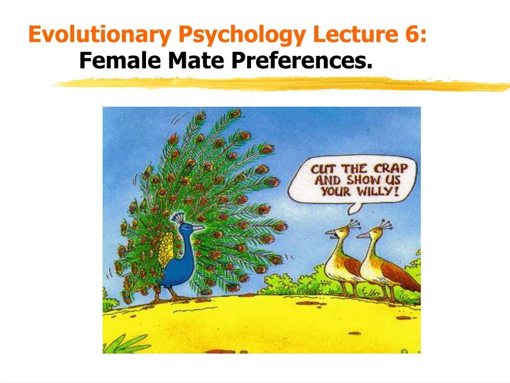 evolutionary psychology lecture 6 female mate preferences