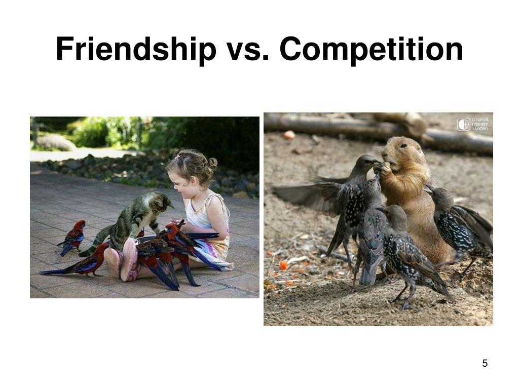 Friendship vs. Competition