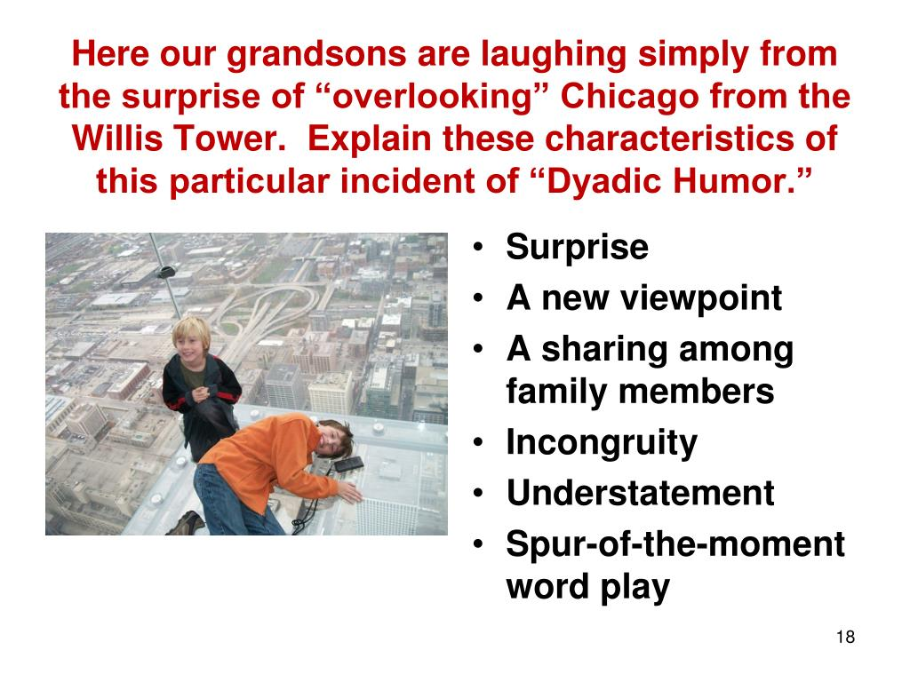 """Here our grandsons are laughing simply from the surprise of """"overlooking"""" Chicago from the Willis Tower.  Explain these characteristics of this particular incident of """"Dyadic Humor."""""""