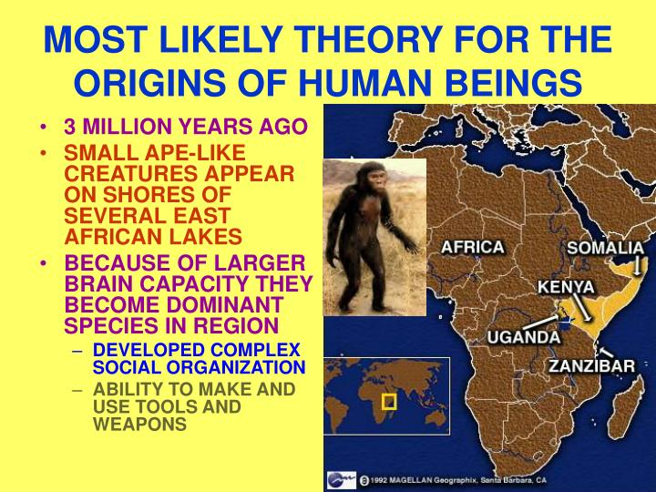 Most likely theory for the origins of human beings