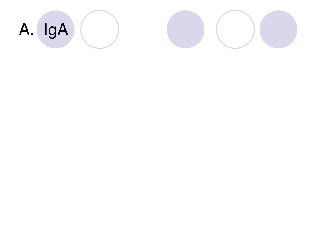 A.  IgA