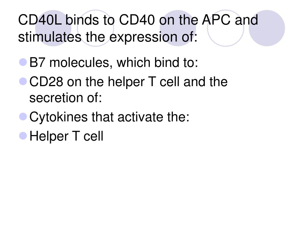 CD40L binds to CD40 on the APC and stimulates the expression of: