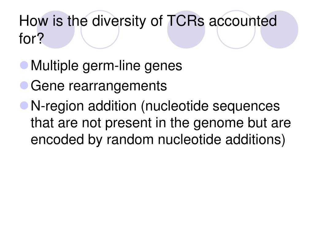 How is the diversity of TCRs accounted for?