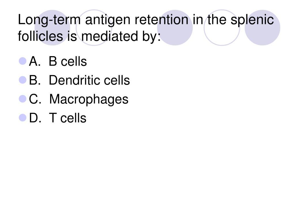 Long-term antigen retention in the splenic follicles is mediated by: