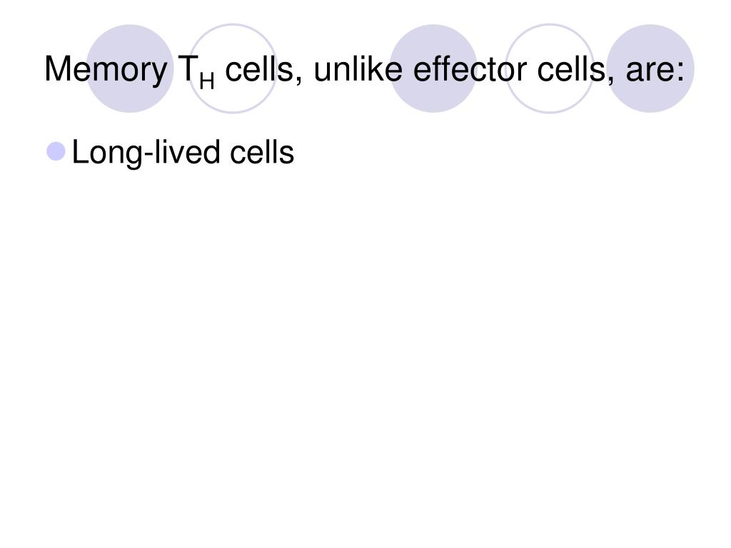 Memory T