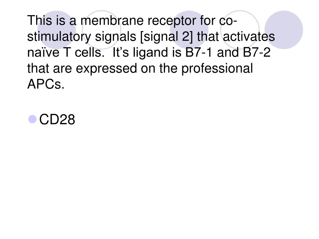 This is a membrane receptor for co-stimulatory signals [signal 2] that activates naïve T cells.  It's ligand is B7-1 and B7-2 that are expressed on the professional APCs.