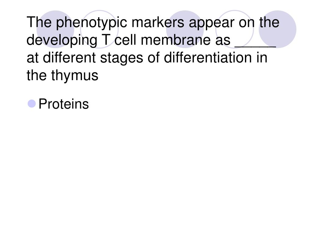 The phenotypic markers appear on the developing T cell membrane as _____ at different stages of differentiation in the thymus