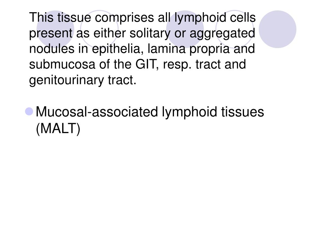 This tissue comprises all lymphoid cells present as either solitary or aggregated nodules in epithelia, lamina propria and submucosa of the GIT, resp. tract and genitourinary tract.