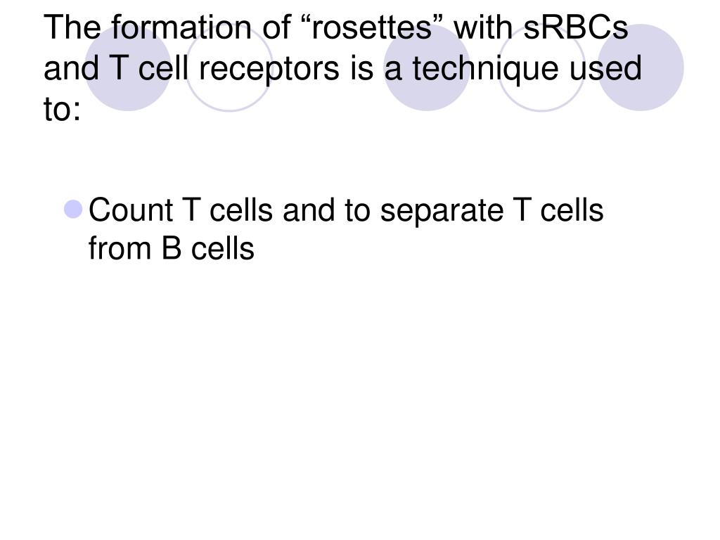 """The formation of """"rosettes"""" with sRBCs and T cell receptors is a technique used to:"""