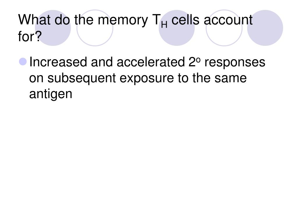 What do the memory T