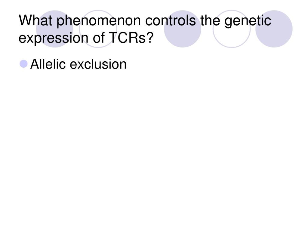What phenomenon controls the genetic expression of TCRs?