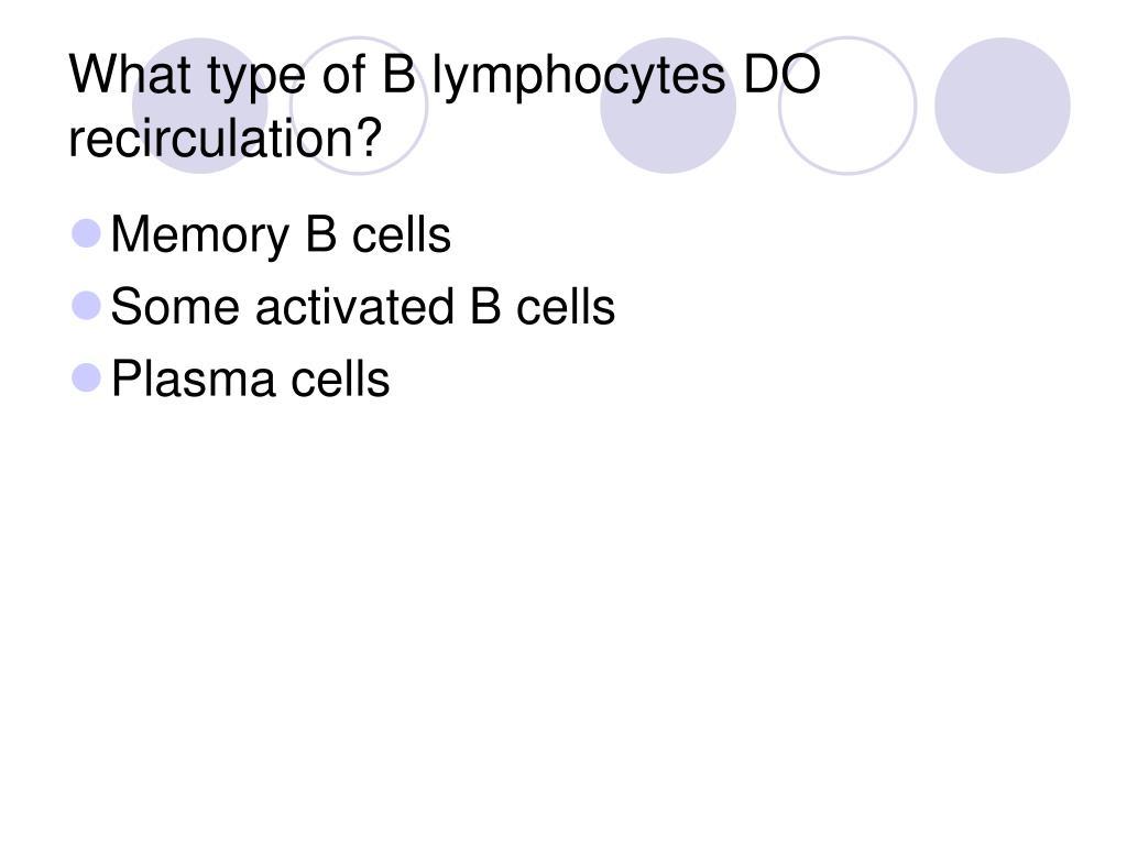 What type of B lymphocytes DO recirculation?