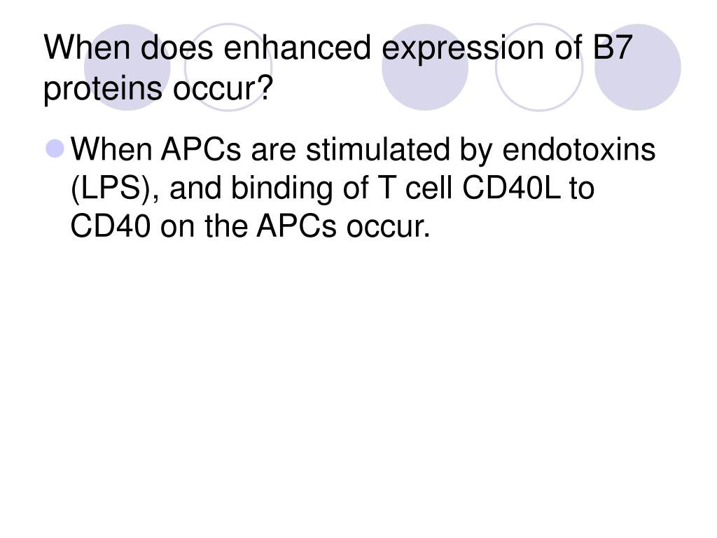 When does enhanced expression of B7 proteins occur?