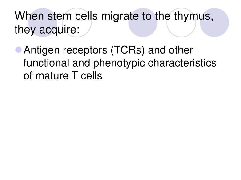 When stem cells migrate to the thymus, they acquire: