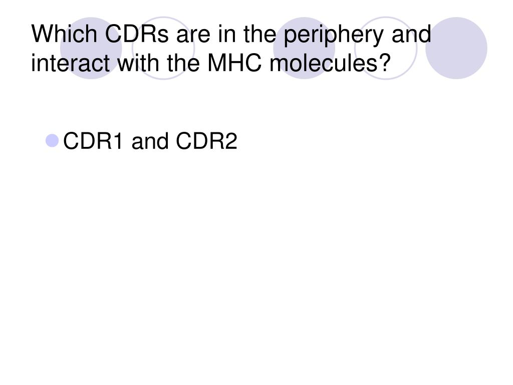 Which CDRs are in the periphery and interact with the MHC molecules?