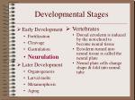 developmental stages10