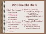 developmental stages5