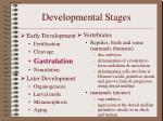 developmental stages8