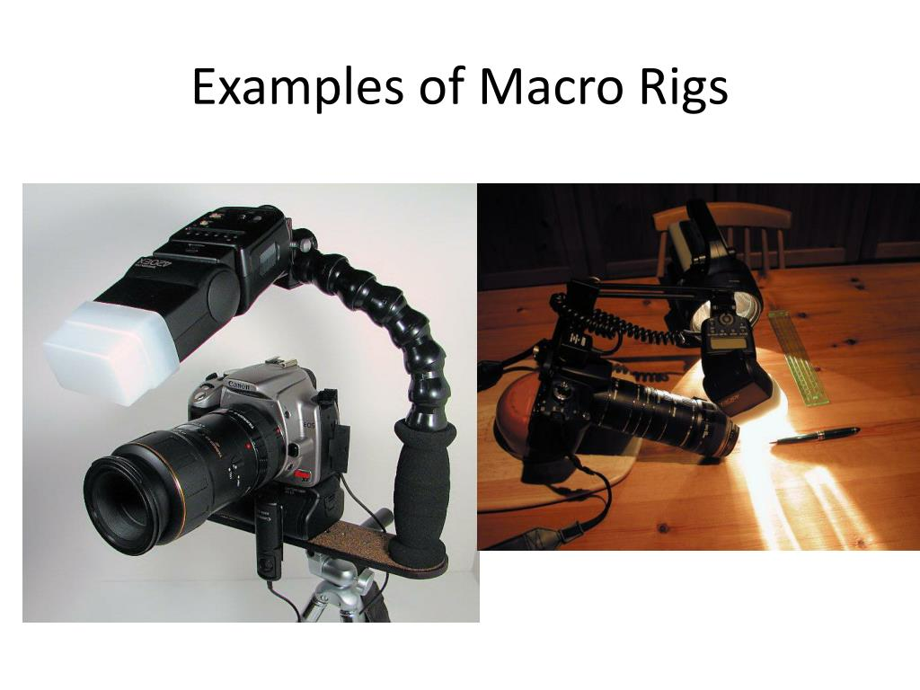 Examples of Macro Rigs