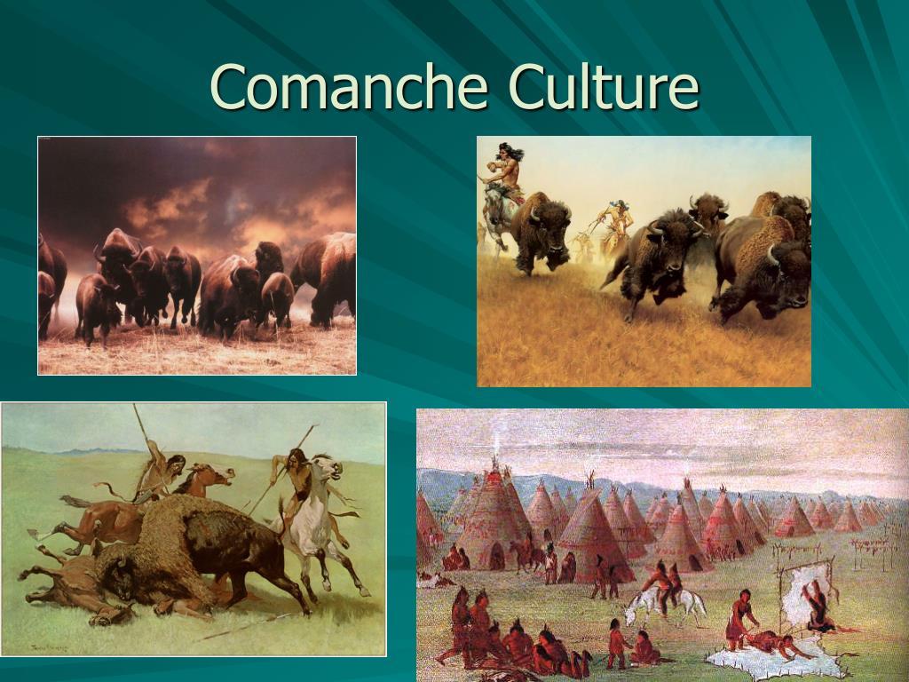 Comanche Culture