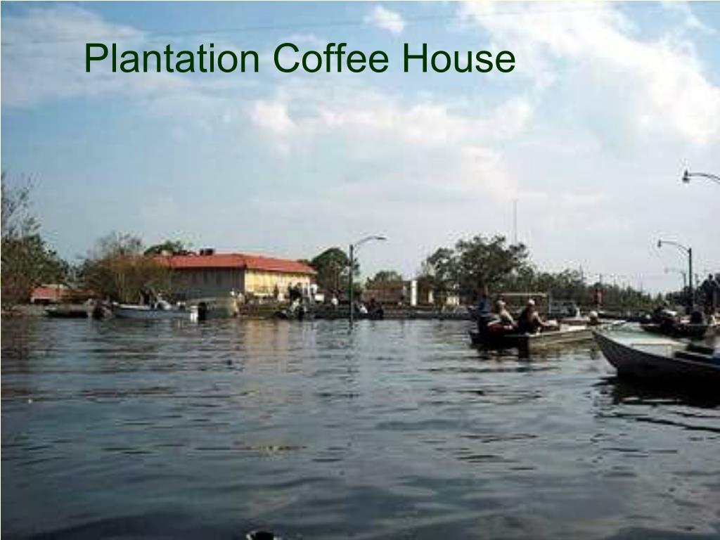Plantation Coffee House