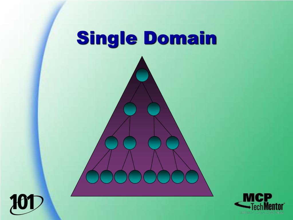 Single Domain