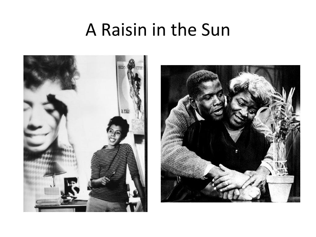 reaction to raisin in the sun dream An african american family pursuing the american dream of owning a home encounters racism and  ruth's reaction  are the characters in a raisin in the sun.