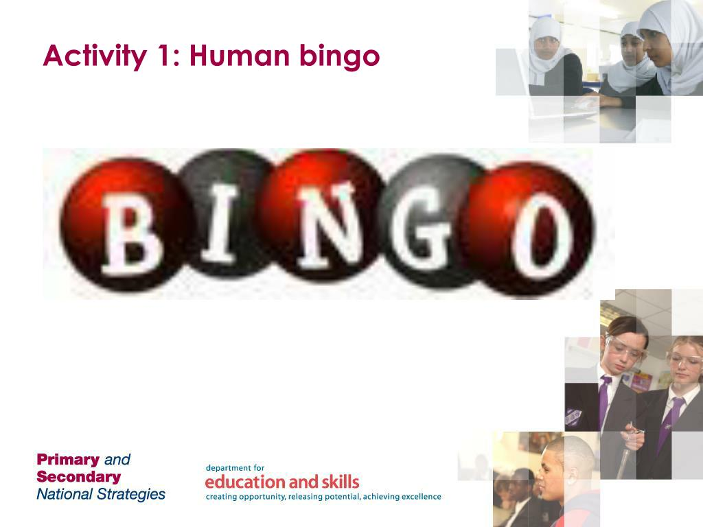 Activity 1: Human bingo