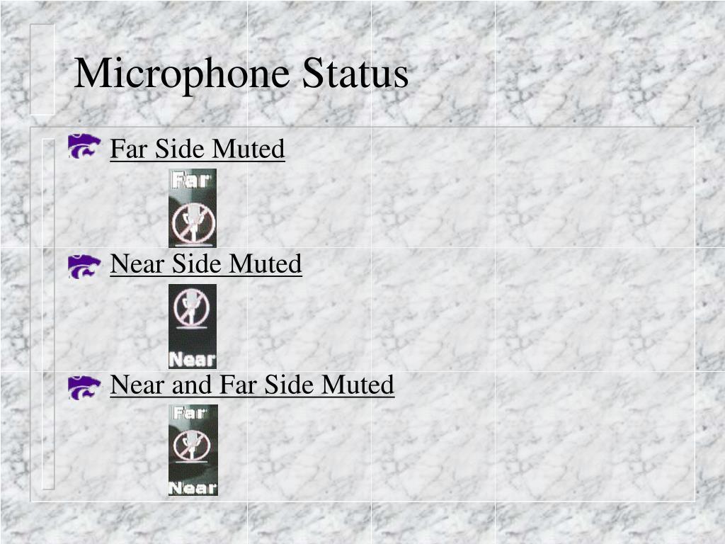Microphone Status