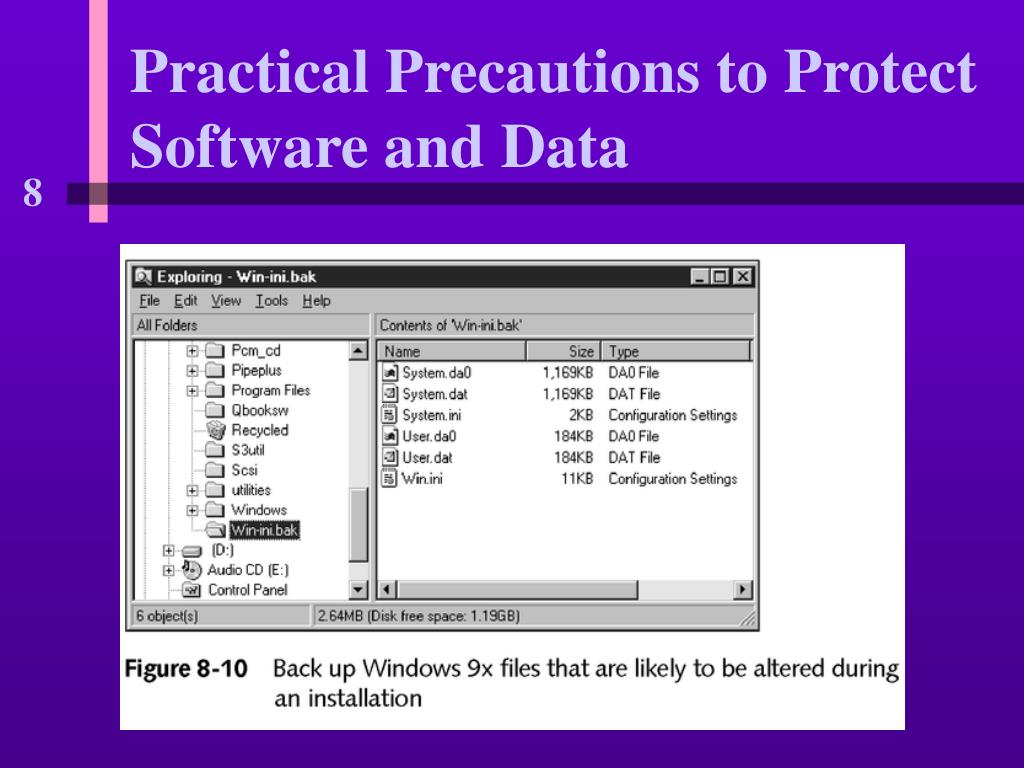 Practical Precautions to Protect Software and Data