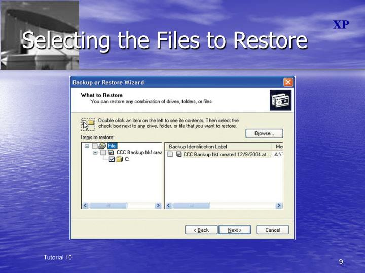 Selecting the Files to Restore