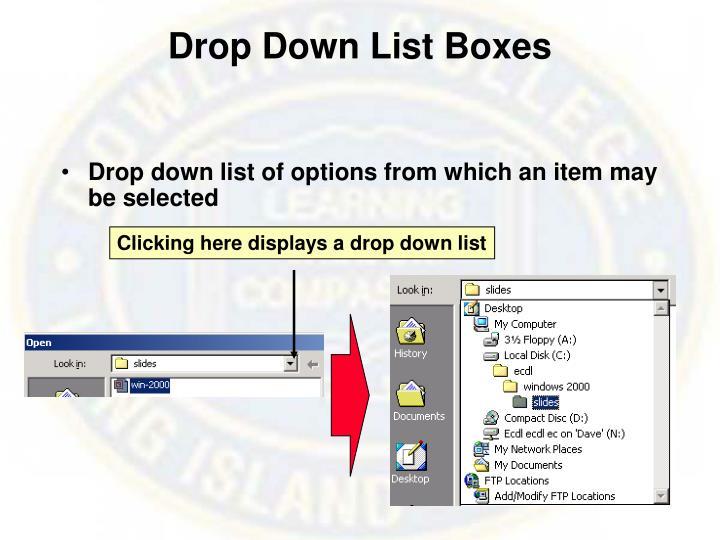 Drop Down List Boxes